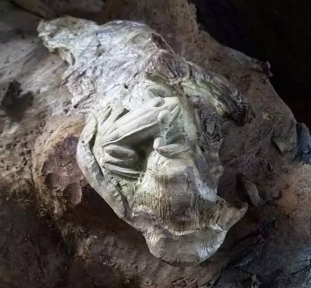 【木雕过程】7月盛夏,荷叶青蛙刻起来