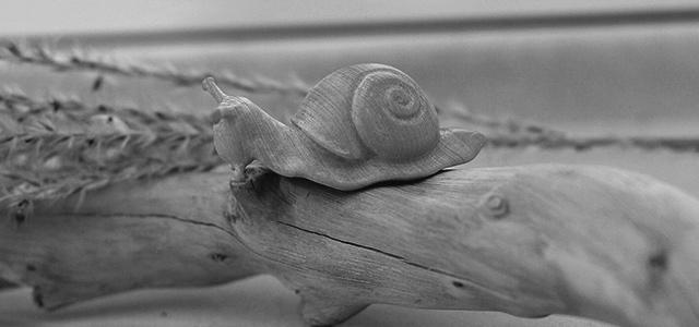 【木雕过程】黄杨木雕刻的小蜗牛-手工记木